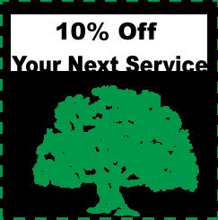 TREE ADD